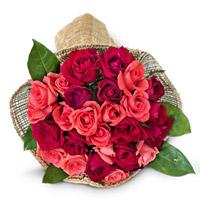 Premium Roses - $27.99