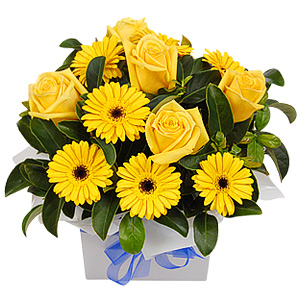 A Grand Gift For Any Occasion. This Arrangement Consists Of Classic Roses, Mini Gerberas And Viburnum.