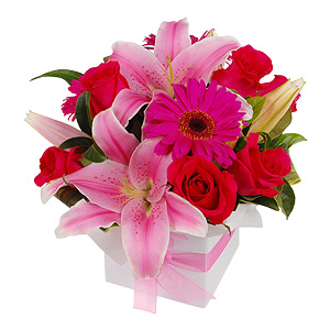 A stylish box filled with lush seasonal pink flowers. This wonderful arrangement consists of Roses, Gerberas, Oriental Lilies and Viburnum.