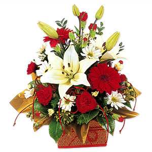 This bouquet designed with red and white flowers is sure to deliver Holiday cheer to any one.
