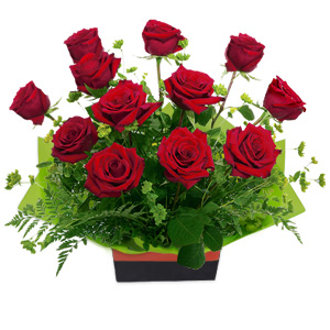 This Boxed Arrangement Of 12 Red Roses Is Sure To Enchant Your Love.