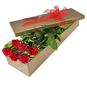 These Classic Red Roses Express True Love Timelessly, Ensuring Your Message Of Love Endures.