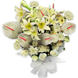 This glorious bouquet has the pristine beauty of a blanket of fresh fallen snow. These outstanding flowers stand with a crisp, clean demeanor that is both eye catching and elegant.