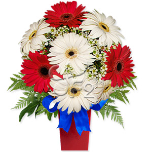 Send this cheerful arrangement of red and white gerbera daisies in a vase to convey your warm wishes on any occasion. A delightful surprise that will leave a lasting impression. Substitution of vase may occur. #best
