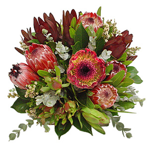 The Warmth And Charm Of The True Australian Spirit Explodes From This Luxurious Collection Of Gorgeous Native Flowers, Which Will Add Style To Any Room In Your Loved Ones Home.