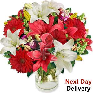 Festive Lilies