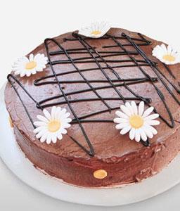 Chocolate delight cake 1 KG