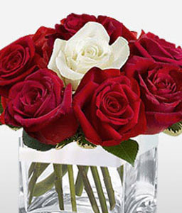 11 Red + 1 White roses in Cube Vase