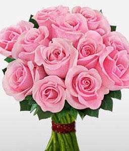 1 Dozen Pink Roses Bouquet