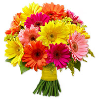 Gerbera Daisies Bouquet by Flora2000