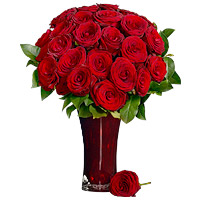 2 Dozen Long Stem Red Roses by Flora2000