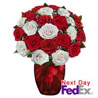 2 Dozen Long Stem Red amp White Roses by Flora2000