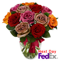 One Dozen Long Stem Assorted Roses by Flora2000