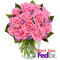 One Dozen Long Stem Pink Roses by Flora2000