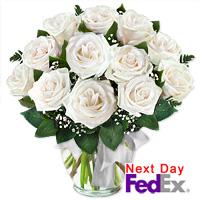 One Dozen Long Stem White Roses by Flora2000