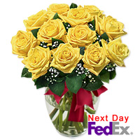 One Dozen Long Stem Yellow Roses by Flora2000