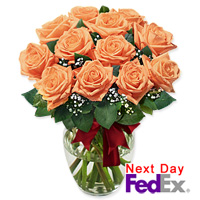 One Dozen Long Stem Peach Roses by Flora2000
