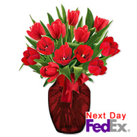 15 Red Tulips by Flora2000