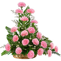 Pink Carnations Arrangement by Flora2000