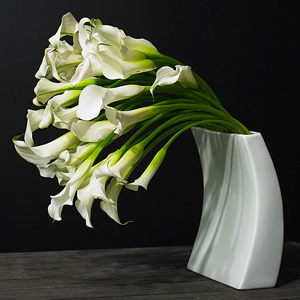 White Callas by David Beahm New York
