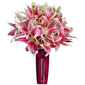 Classic Pink Lilies