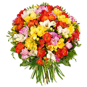 Freesias Bouquet