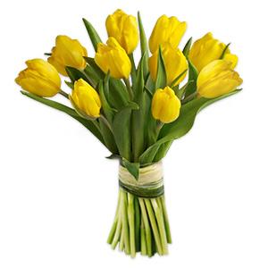 Happiness Tulips