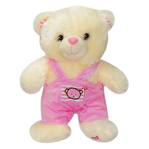 Bear in a pink jumper
